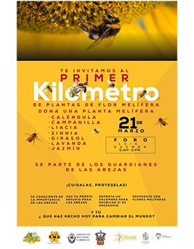 Cartel informativo y de invitación al evento: Primer Kilómetro de plantas de flor melífera. A realizarse el 21 de marzo, de 9:00 a 21:00 horas, en el Foro Luis Guzmán Velasco del Jardín principal de Ciudad Guzmán.