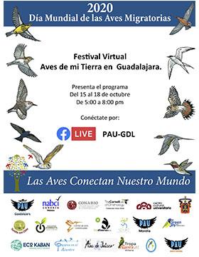 Festival Virtual Aves de mi Tierra en Guadalajara