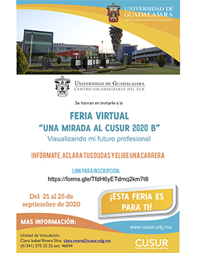 "Feria Virtual: ""Una mirada al CUSur 2020B"""