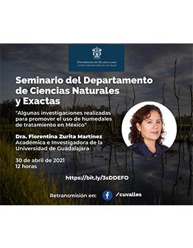 Conferencia: Algunas investigaciones realizadas para promover el uso de humedales de tratamiento en México