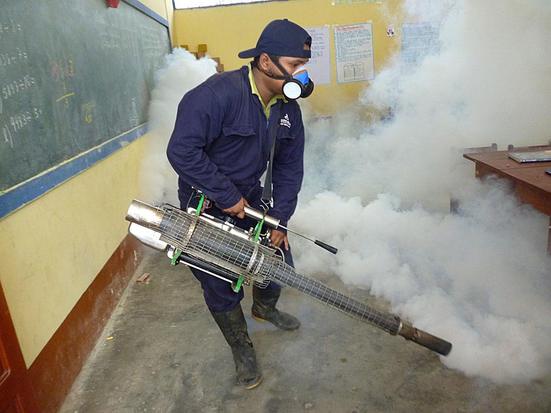 Cucba capacita en l nea sobre control de plagas for Control de plagas badajoz