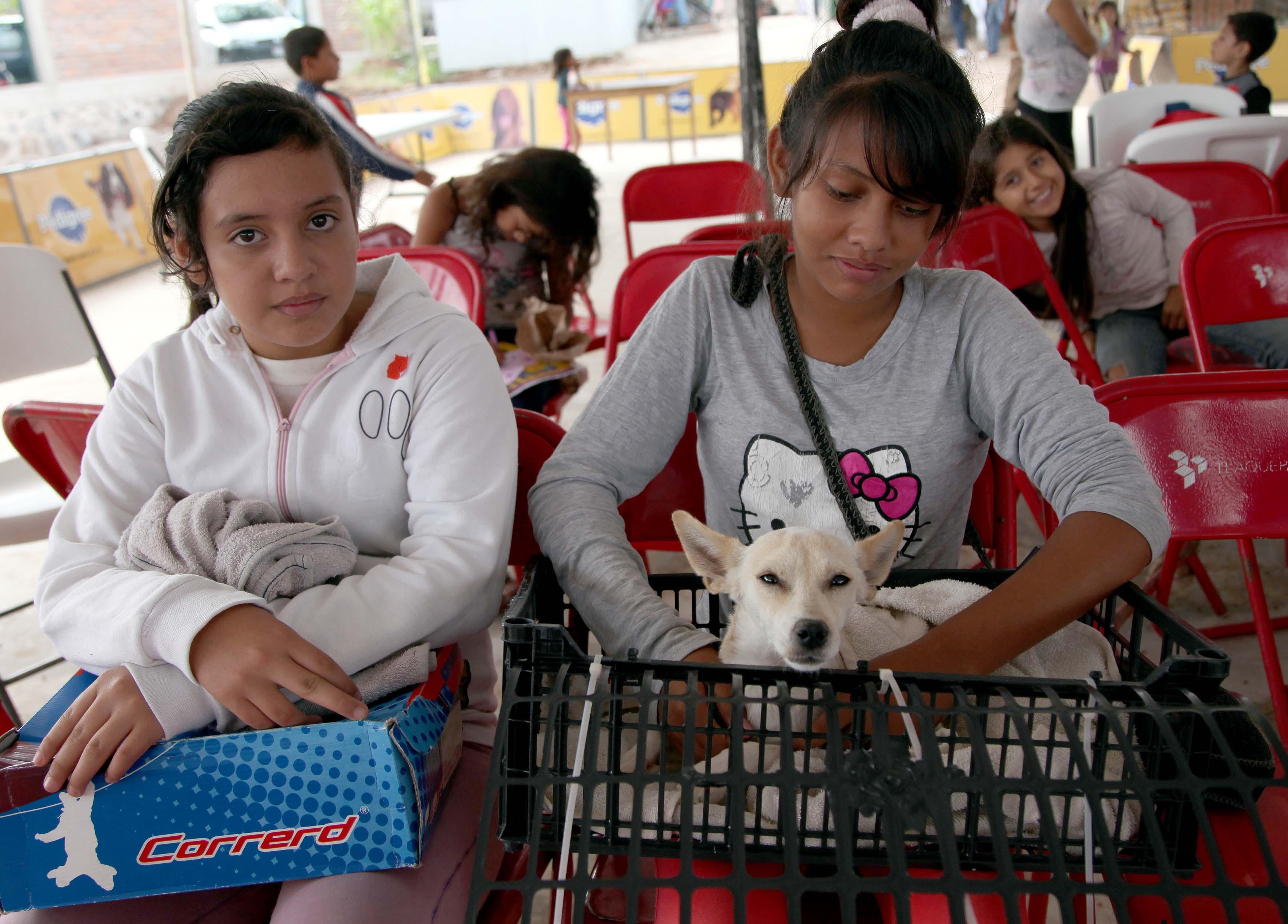 Mujer llevando su mascota a esterilización