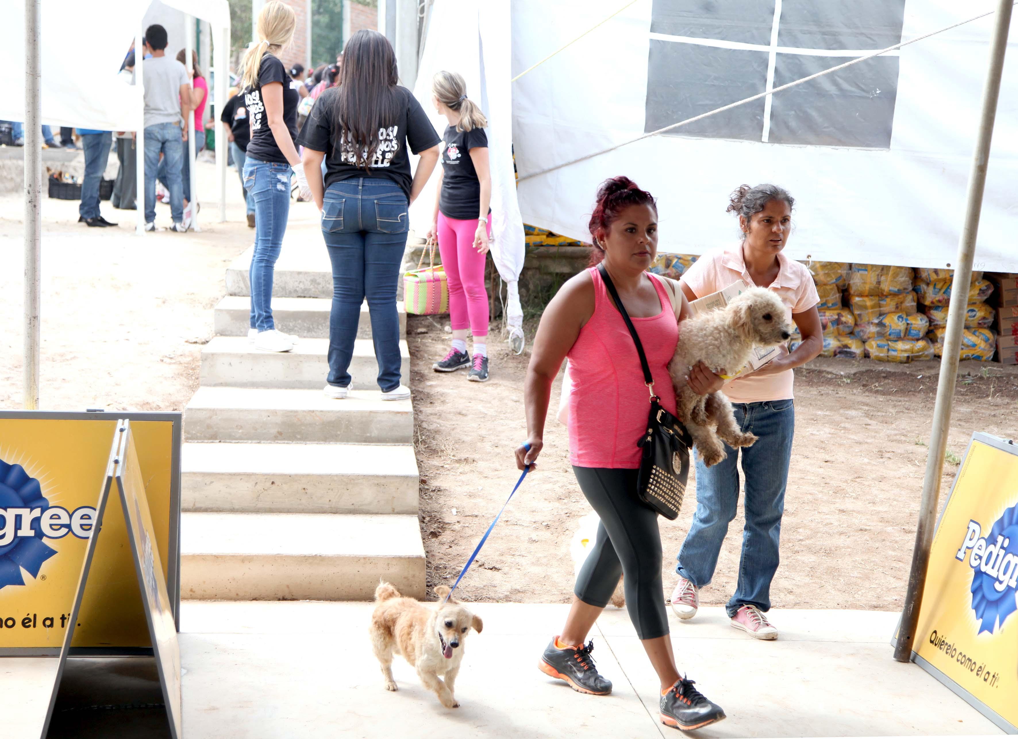 Mujer llevando los perros a esterilización