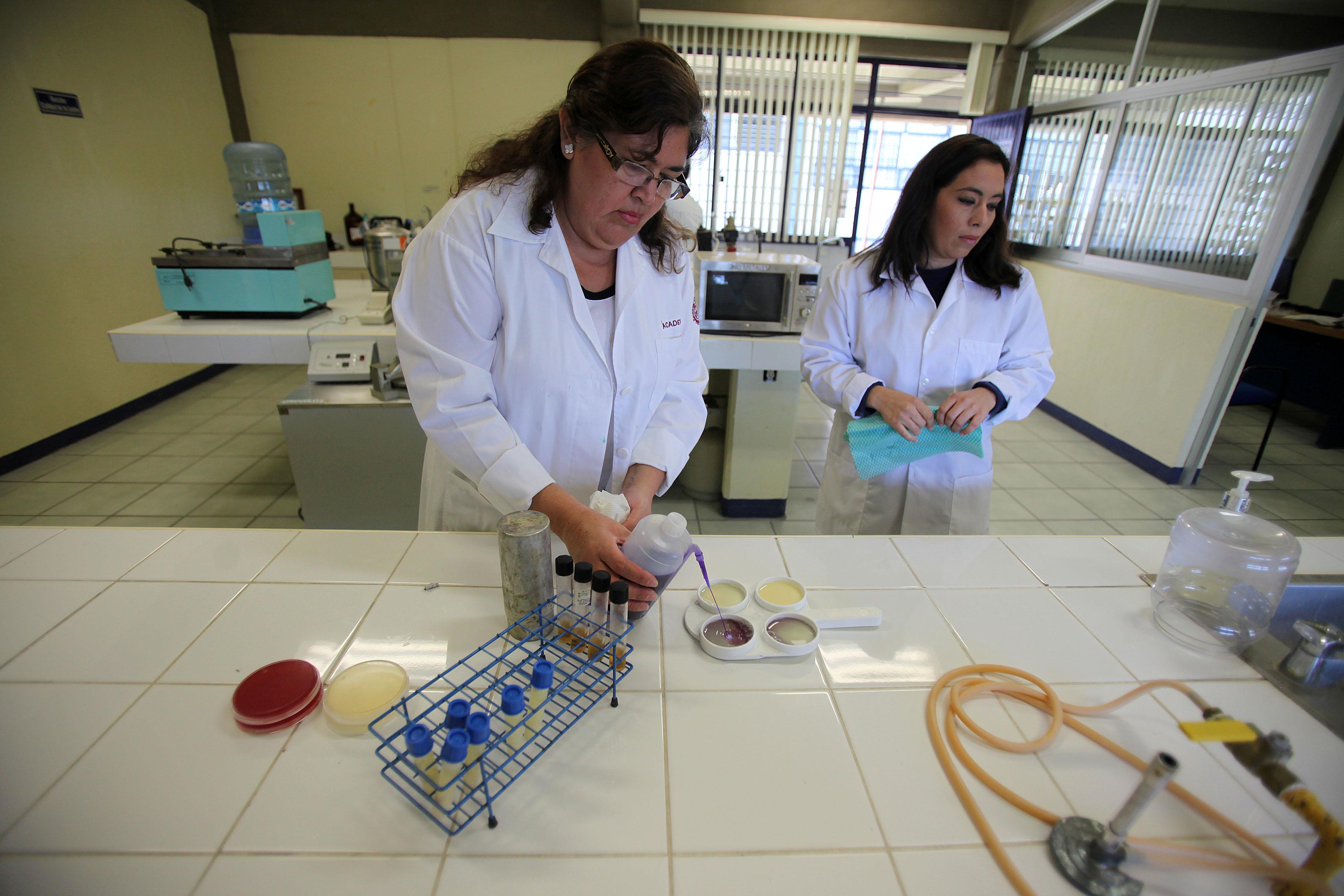 Mujeres analizando la producción, enfermedades y calidad de leche