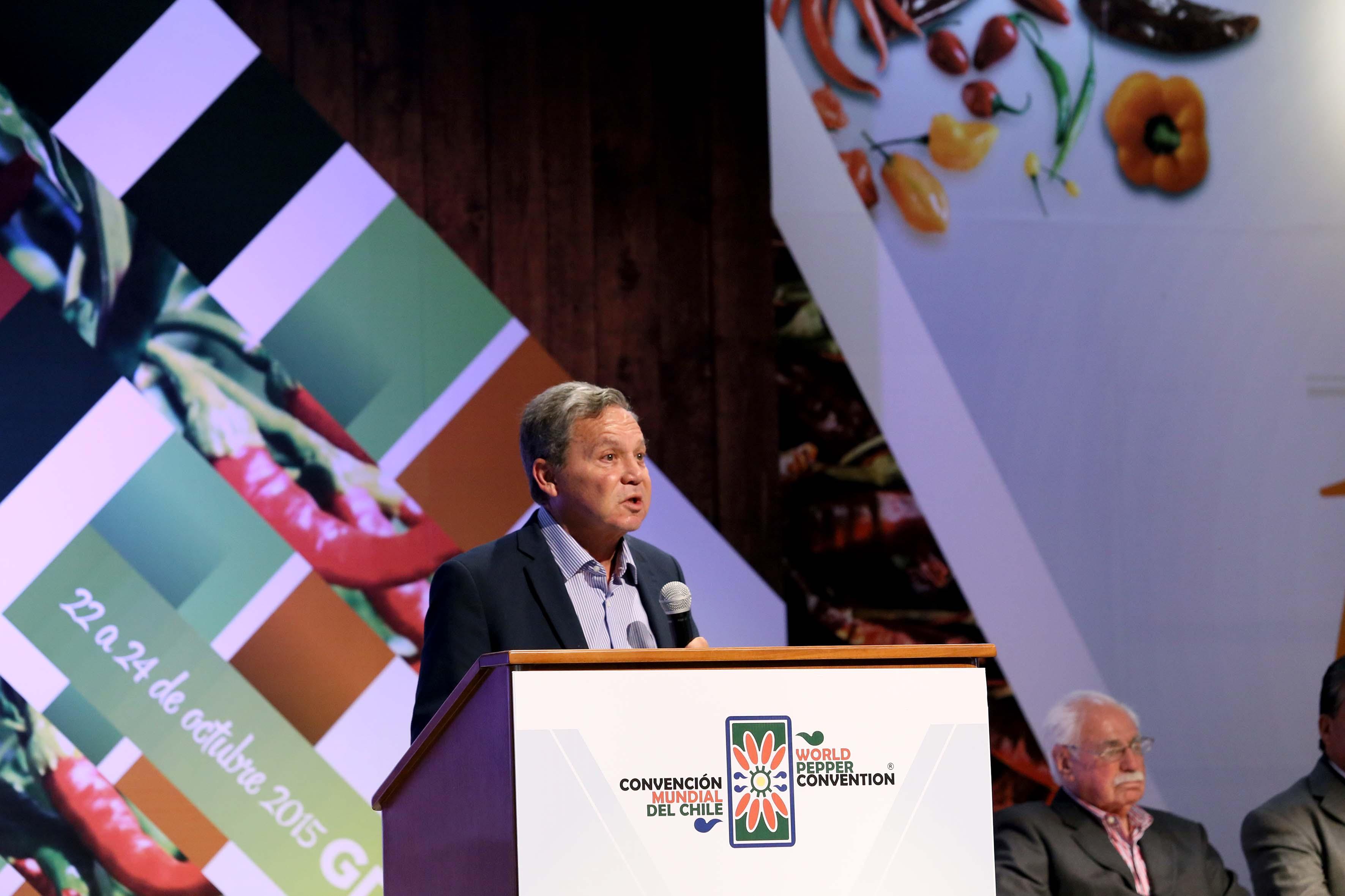 Panelista en el podio en el uso de la voz