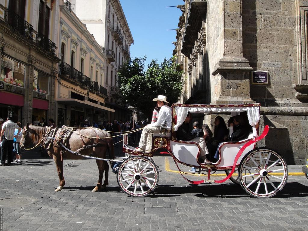 Calandria en la las calles de Guadalajara