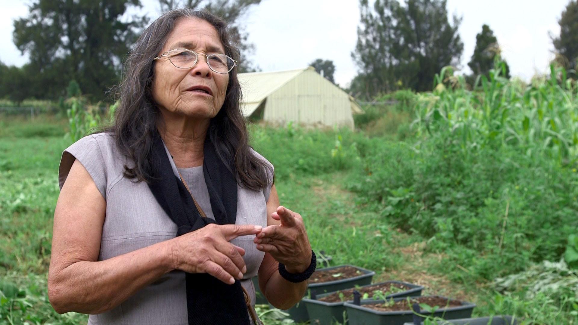Hermila Brito Palacio, investigadora del CUCBA, explicando la importancia del uso de la tierra, bajo este proyecto