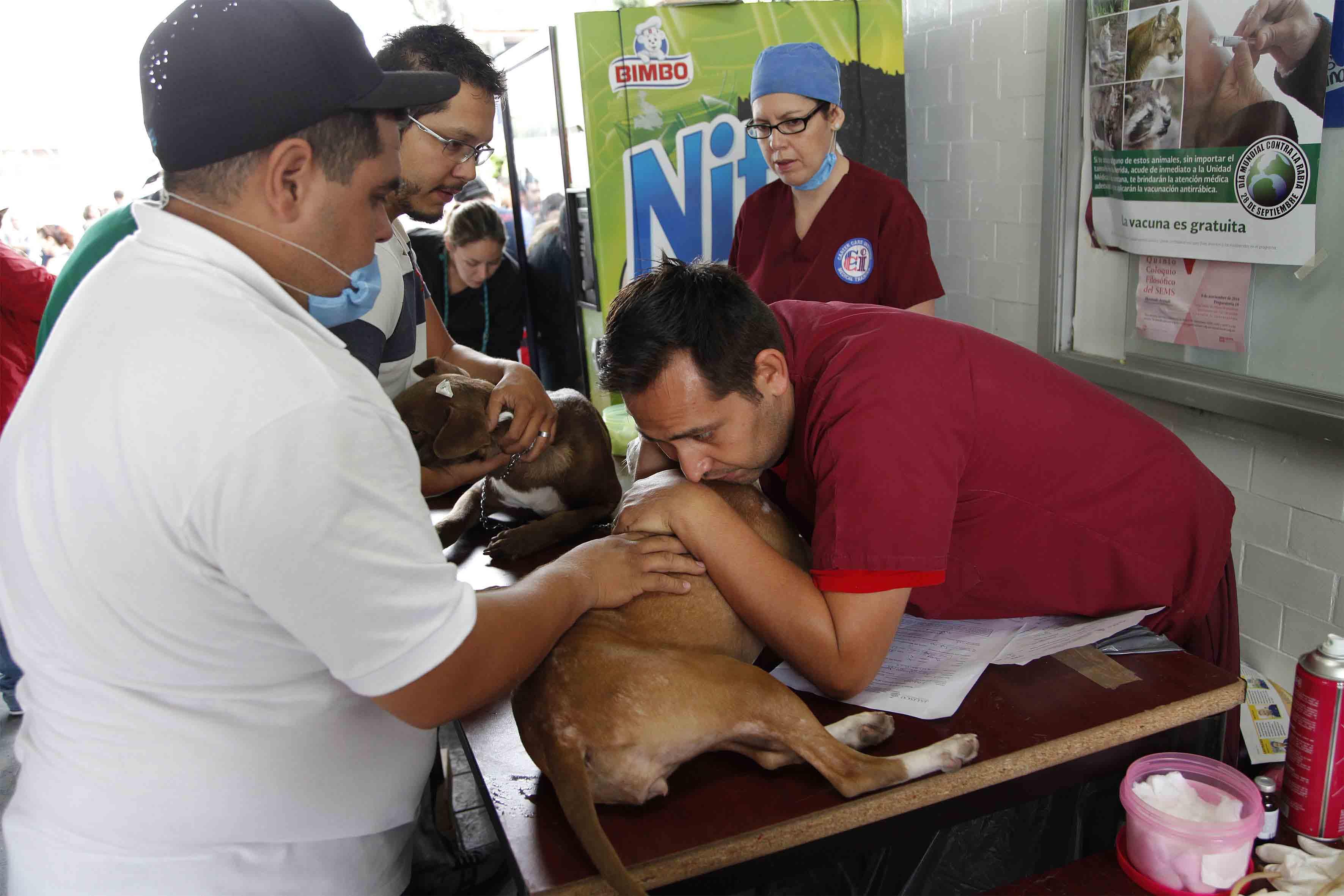 """Voluntarios y ciudadanos participando en la """"Jornada Intensiva de Esterilización Canina y Felina"""""""