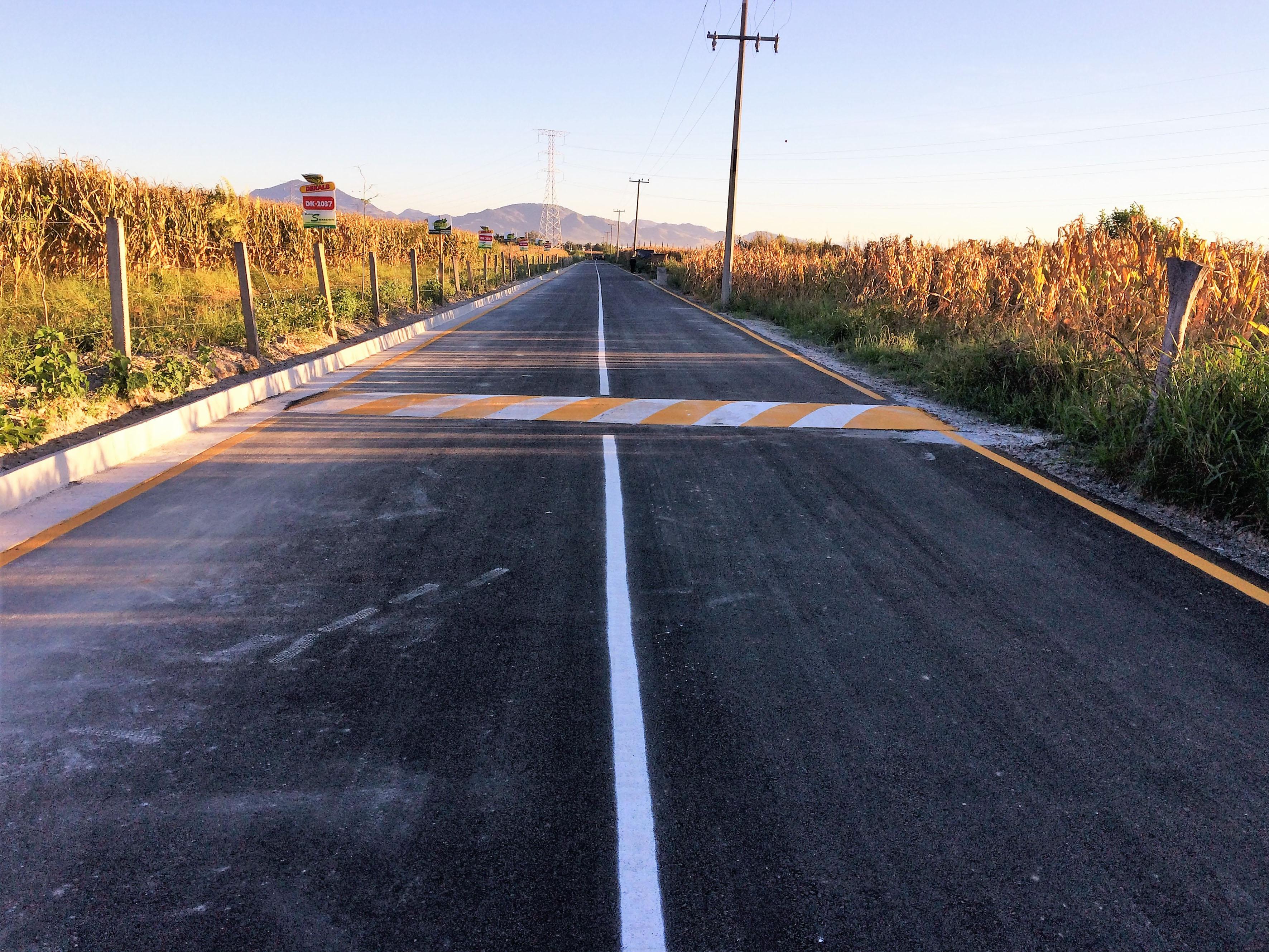 Tramo carretero pavimentado, que conecta al campus con la zona de La Mojonera