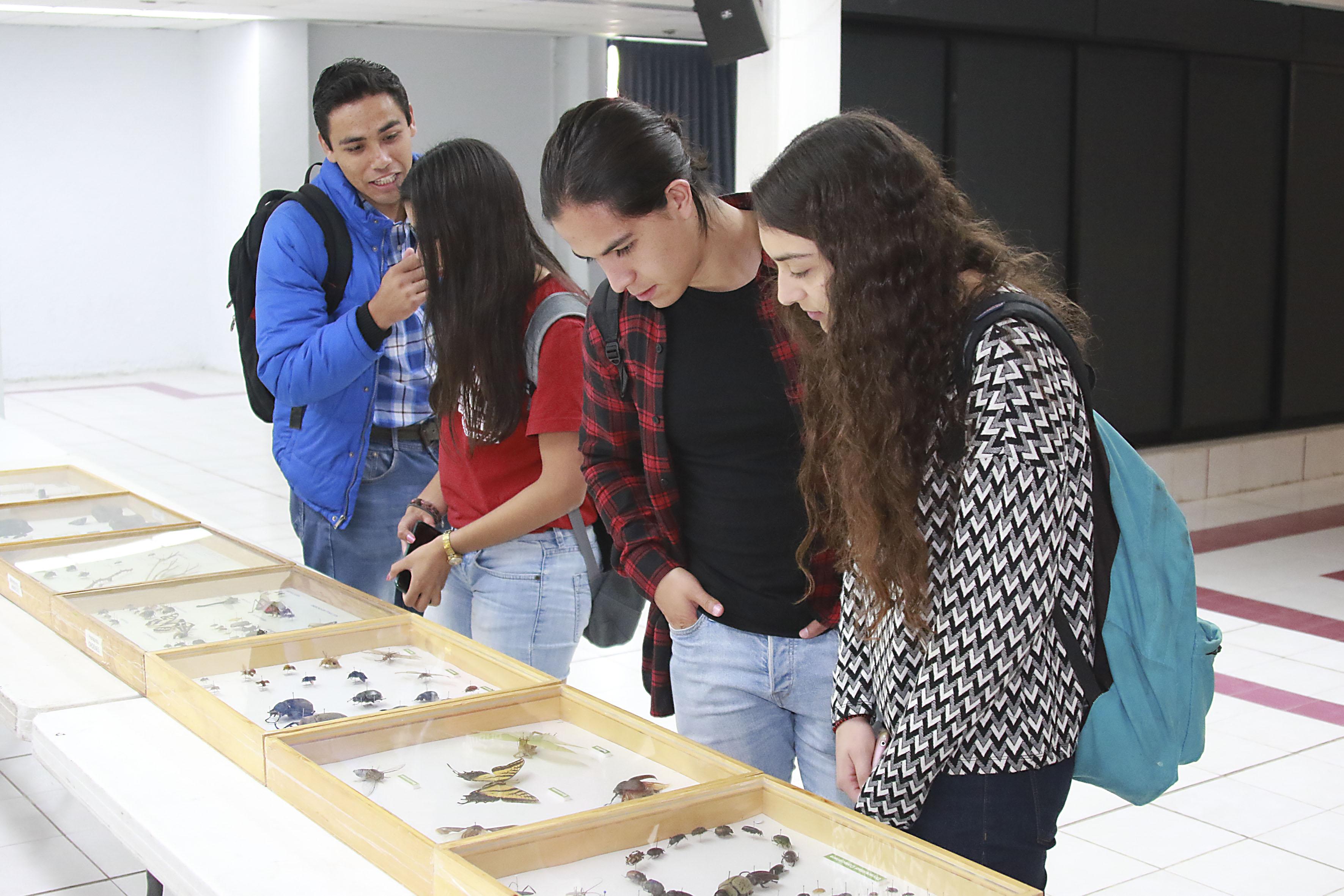 Estudiantes del CUCBA, observando una colección de artrópodos, exhibidos durante el encuentro de Ciencia y Tecnología 2016.