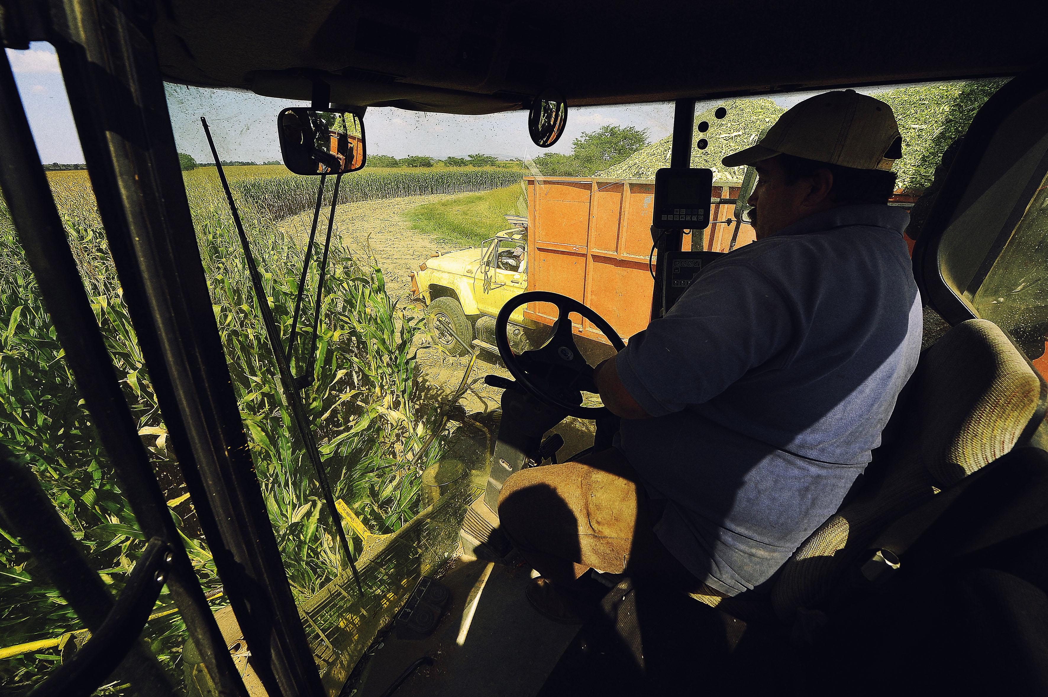Hombre trabajando el campo, arriba de un tractor.