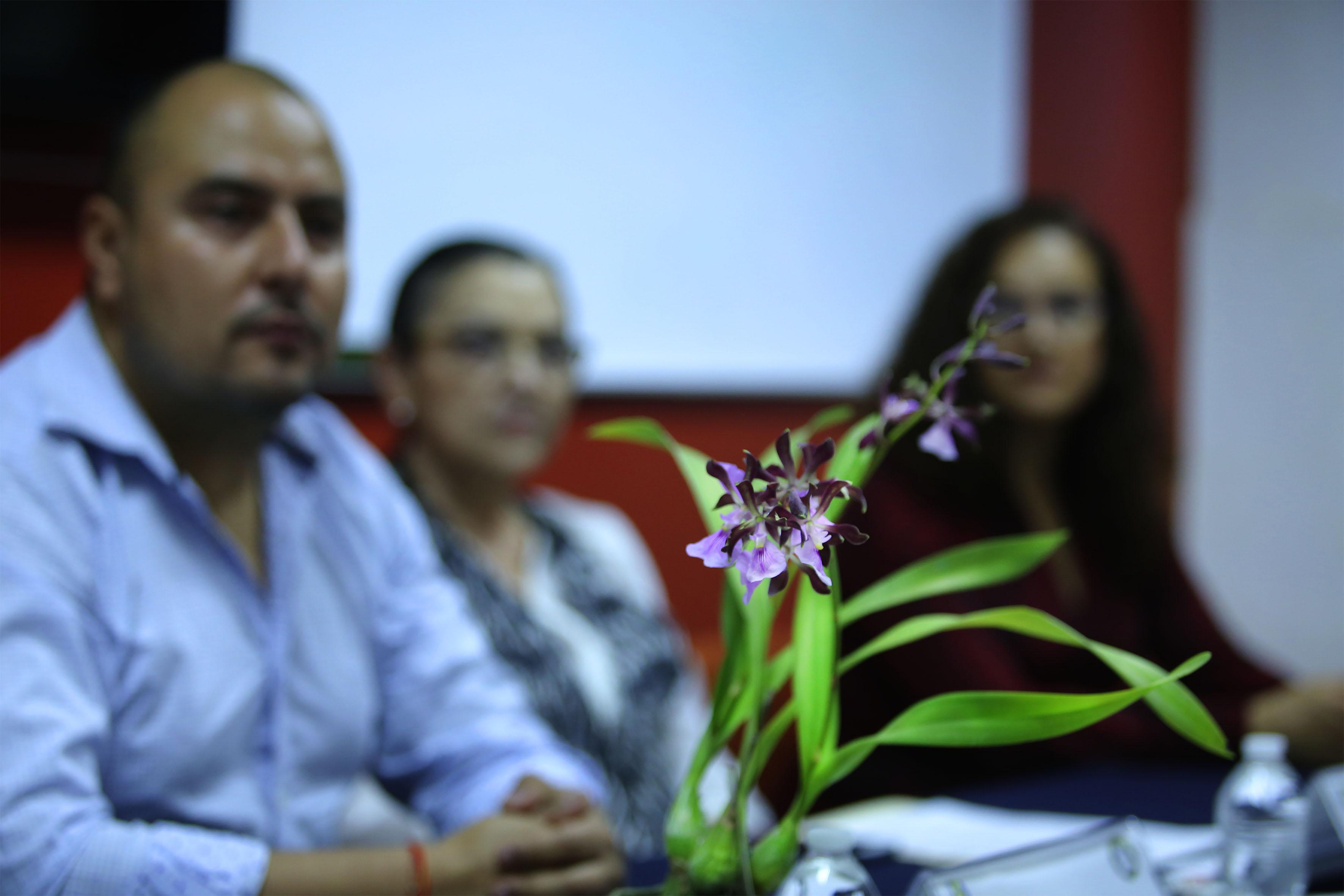 Especie mexicana de orquídea en extinción, en tonos lilas y morado.
