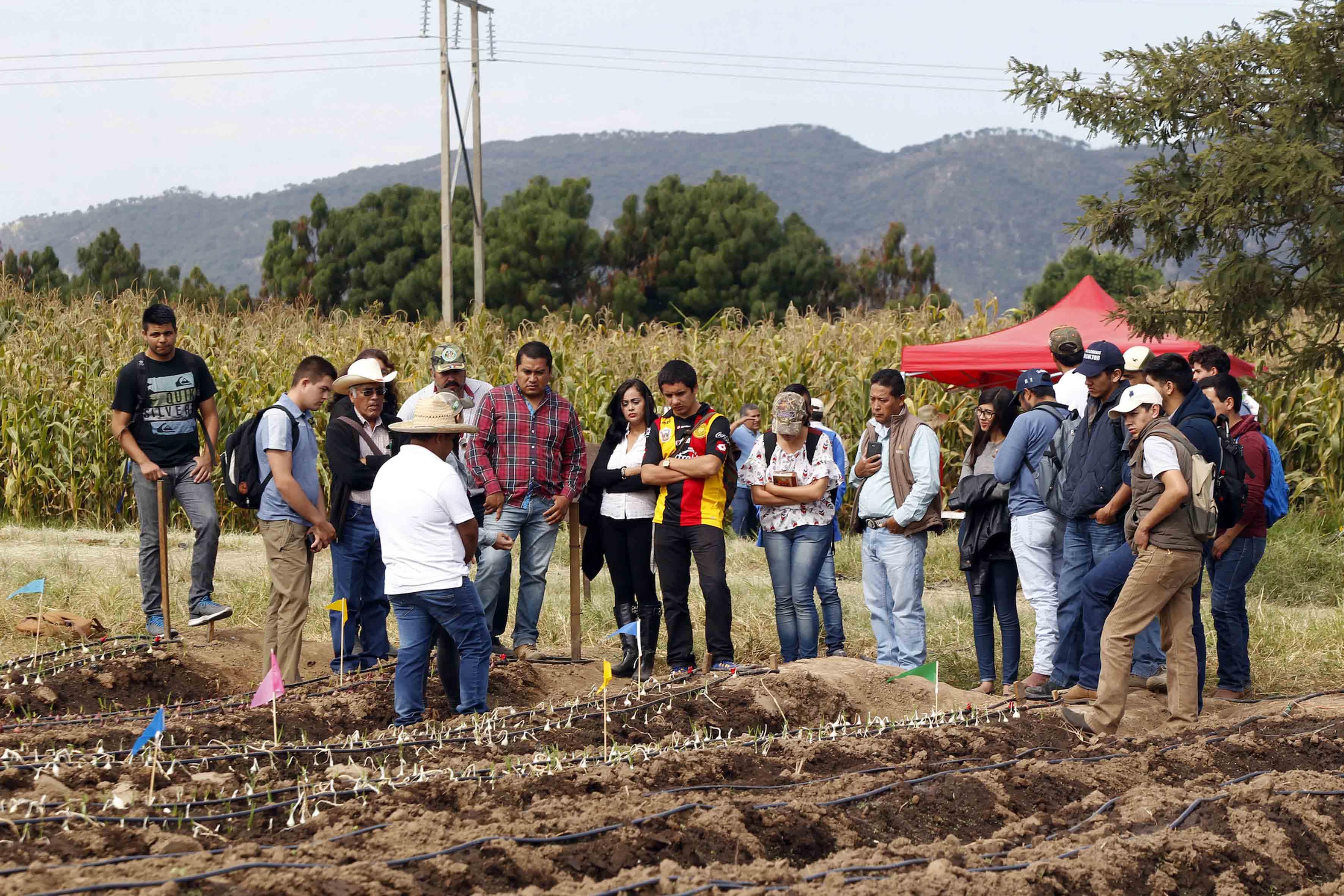 Alumnos participando en el  Observatorio de Prácticas Comunitarias para el Buen Vivir, del Centro Universitario del Sur (CUSur),