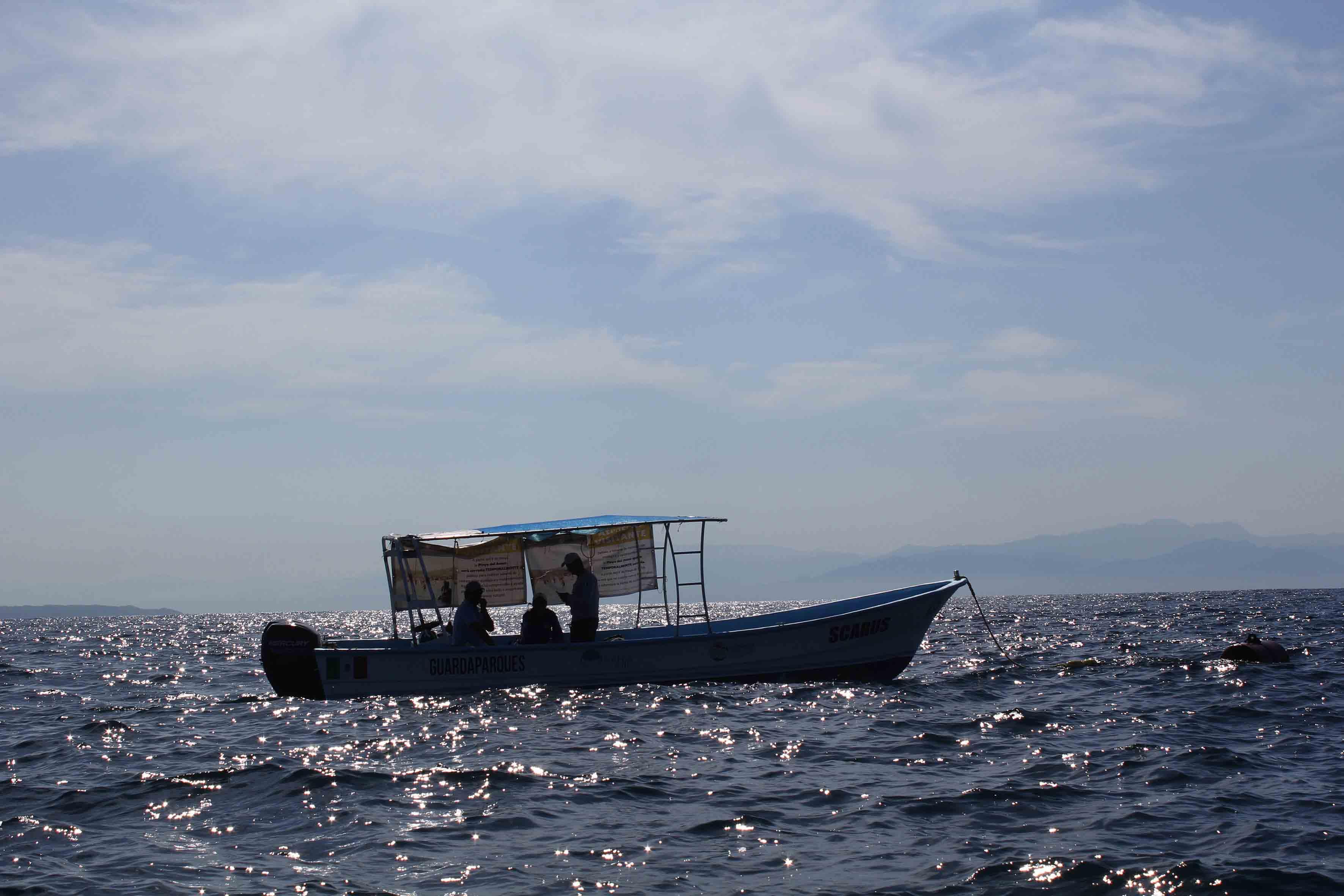 Investigadores del centro trabajan, en conjunto con técnicos de la Conanp, en la recuperación de arrecifes de coral en su segunda fase