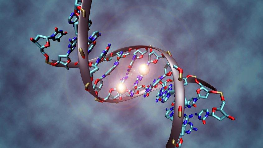 Animación de una parte de una estructura de Ácido desoxirribonucleico (ADN).