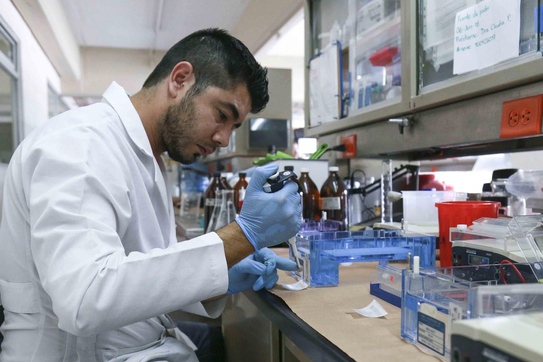 Trabajador de laboratorio realizando pruebas