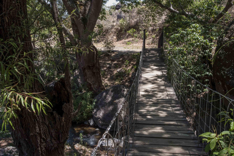 Puente que salva el riachuelo de la zona forestal.