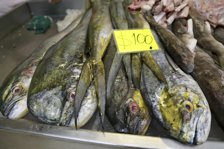 Pescadería de un mercado popular mexicano