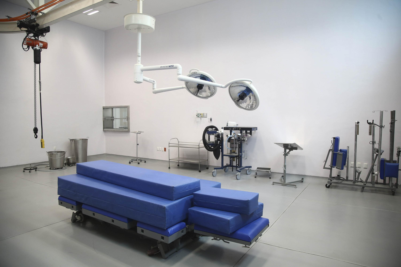 Sala de procedimientos quirúrgicos para animales