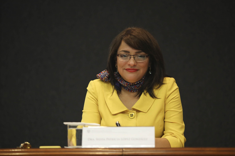 Silvia Patricia López González en una mesa de presidium