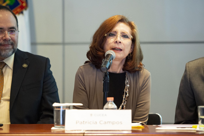 Académica del CUCSH, maestra Patricia Campos González, haciendo uso de la voz durante el coloquio