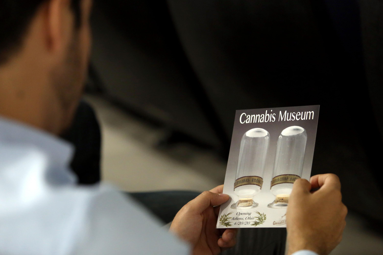 Persona observando el folleto informativo de la planta Cannabis