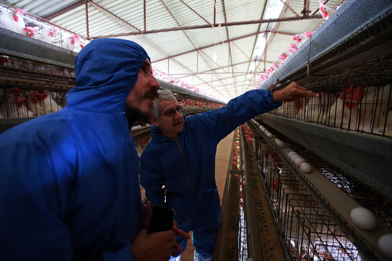 El doctor Juan Antonio Serratos Vidrio y el reportero Julio Ríos en granja avícola