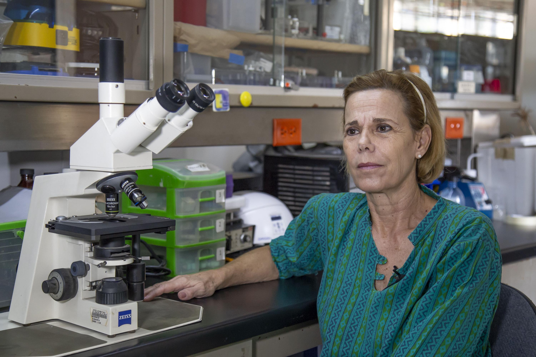Investigadora del Centro Universitario de Ciencias de la Salud (CUCS), de la Universidad de Guadalajara, la doctora Mary Fafutis Morris