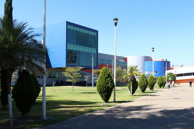Centro Universitario del Sur (CUSur)