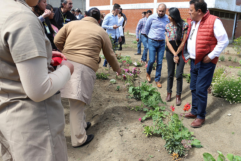 El cultivo de hortalizas, especias, hierbas aromáticas y plantas de ornato con propósitos terapéuticos y para el consumo de la población