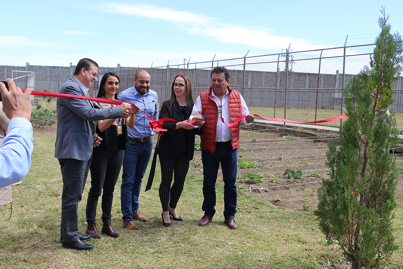Autoridades universitarias y de gobierno inauguran en el Ceinjure de Ciudad Guzmán un huerto orgánico