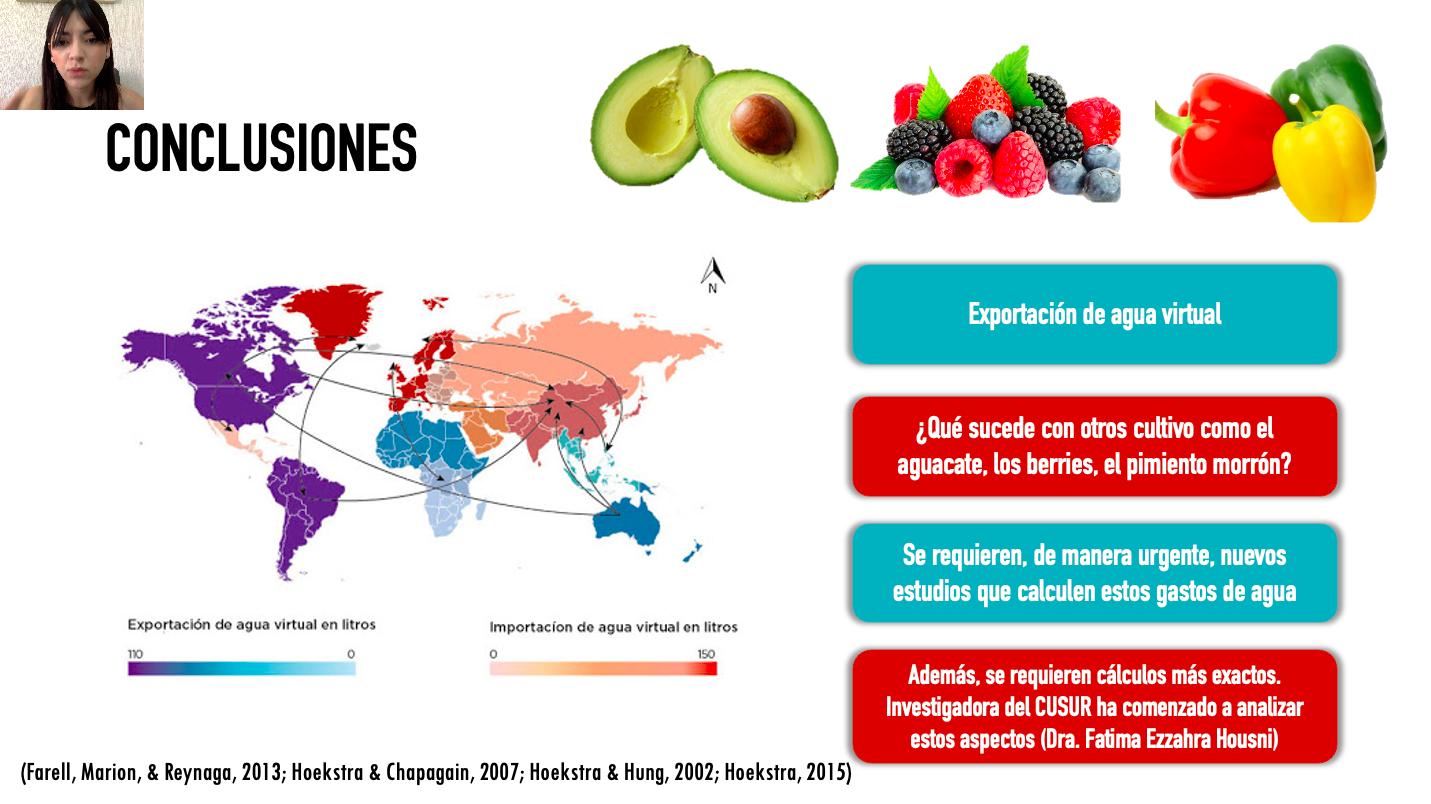 En las últimas décadas su producción, destinada a la exportación, ha desplazado la de otros productos como el maíz, advierte investigadora del CUSur