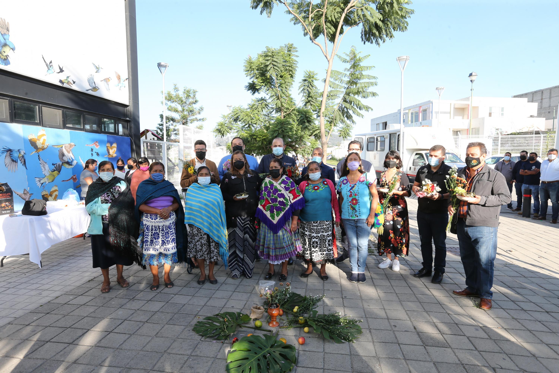 Es una primera estrategia de acercamiento de los programas de salud intercultural