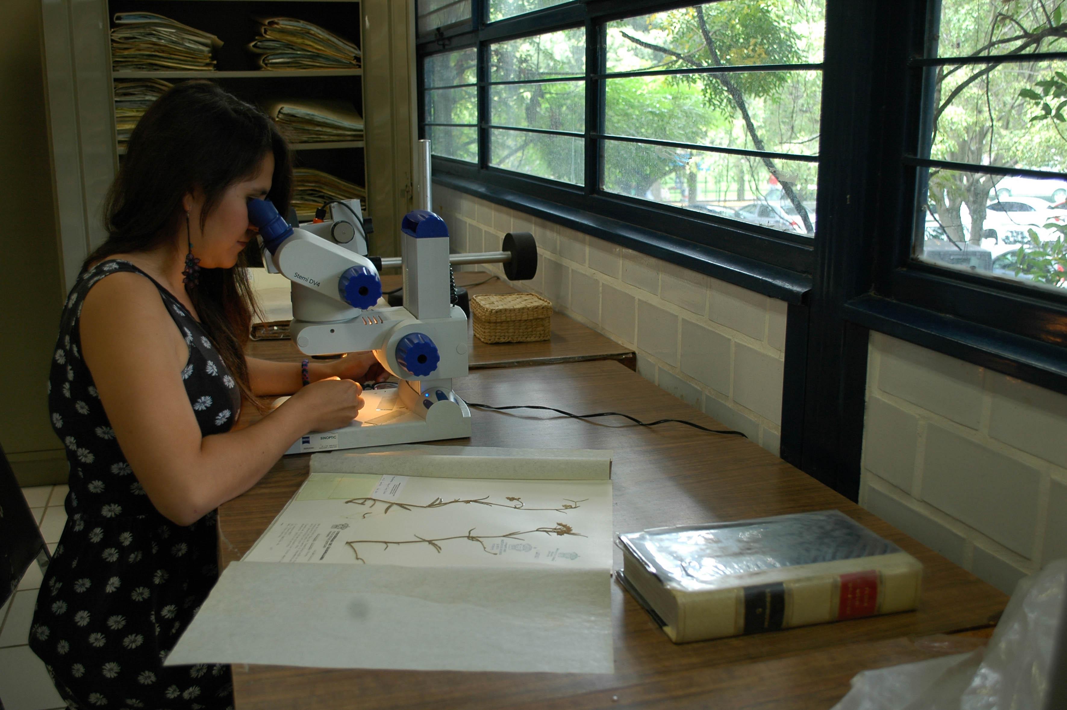 Campo laboral de los biólogos se expande | Universidad de Guadalajara
