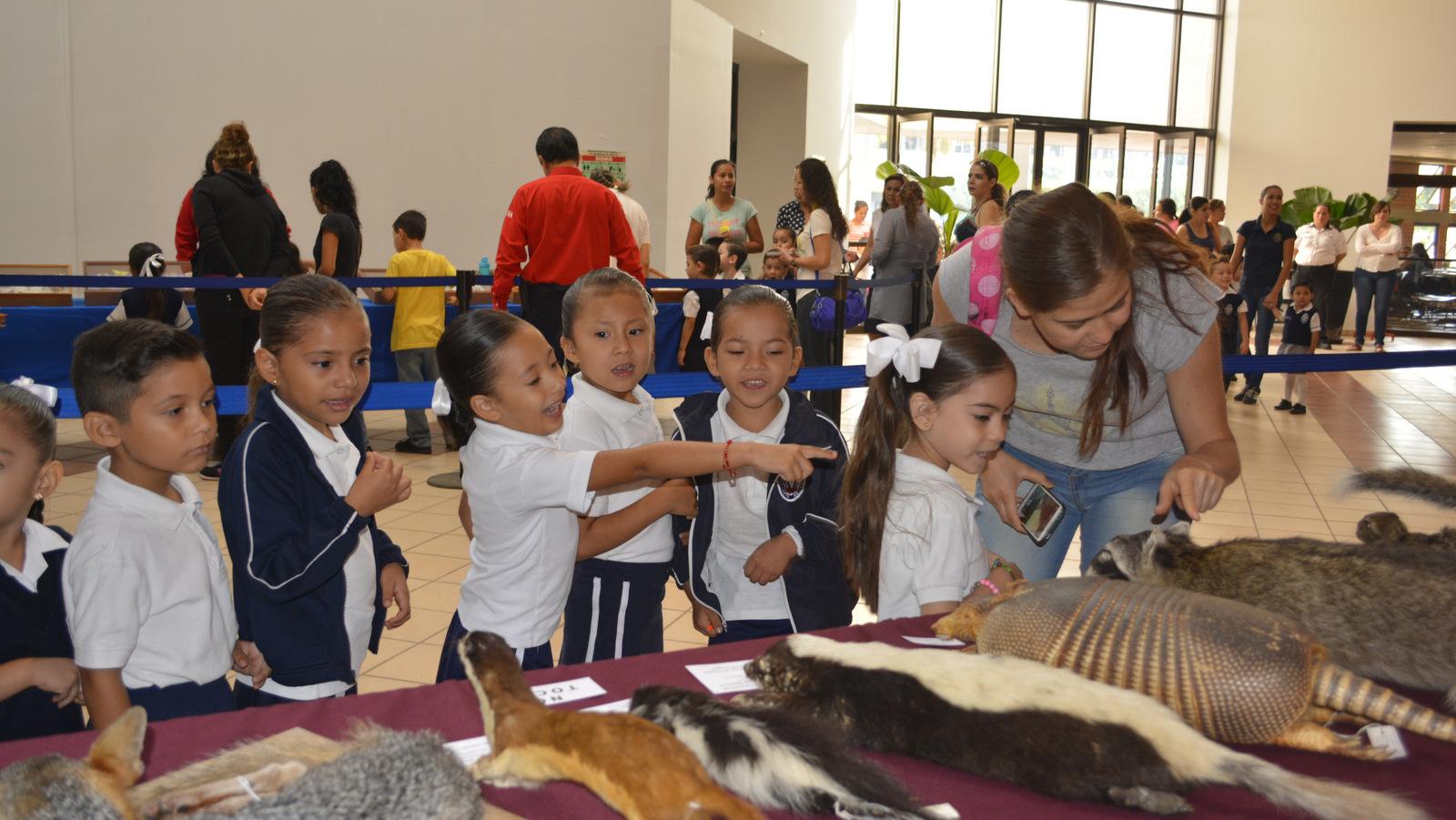 Niños observando animales disecados en la exposición biológica del CUCSUR