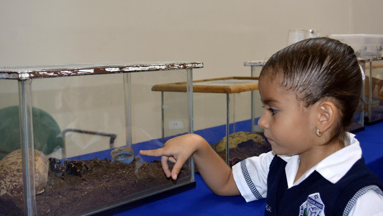 Niños observando animales exhibidos en la exposición biológica del CUCSUR