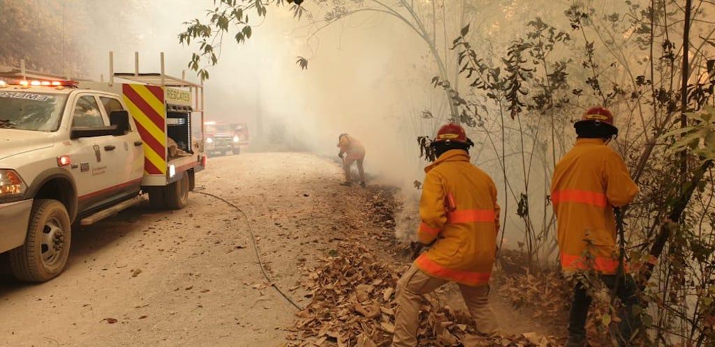 Personal de protección civil y bomberos, controlando un incendio forestal