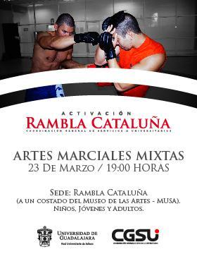 Cartel con texto lugar y día de Exhibición por la Organización Artes Marciales Mixtas