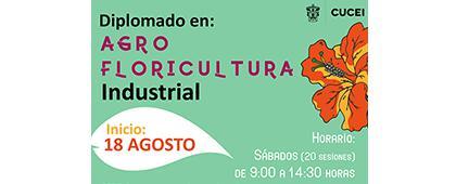 Cartel informativo sobre la convocatoria de un Diplomado en Creación y Desarrollo de Empresas para Flor de Corte (Floricultura)