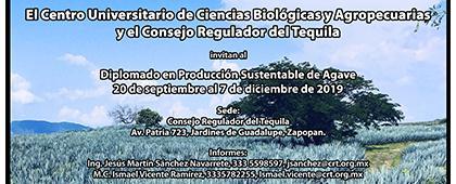Cartel informativo para promocionar el Diplomado en Producción Sustentable del Agave, a desarrollarse del 20 de septiembre al 7 de diciembre, Consejo Regulador del Tequila