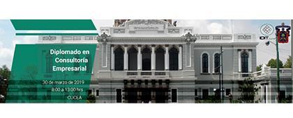Cartel informativo sobre el Diplomado en Consultoría Empresarial