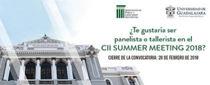 Convocatoria para participar como panelista o tallerista en el CII Summer Meeting 2018. Fecha límite de convocatoria: 28 de febrero. Esta actividad se llevará a cabo del 15 al 17 de julio
