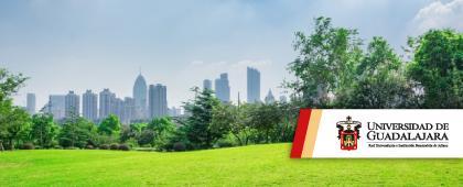 Identidad gráfica del Doctorado: Ciudad, territorio y sustentabilidad. Registro como aspirante del 4 de junio al 3 de julio en www.escolar.udg.mx