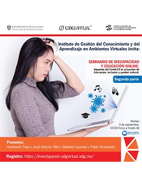 Seminario de discapacidad y educación online: Impactos del Covid-19 en proyectos de Educación, inclusión y gestión cultural